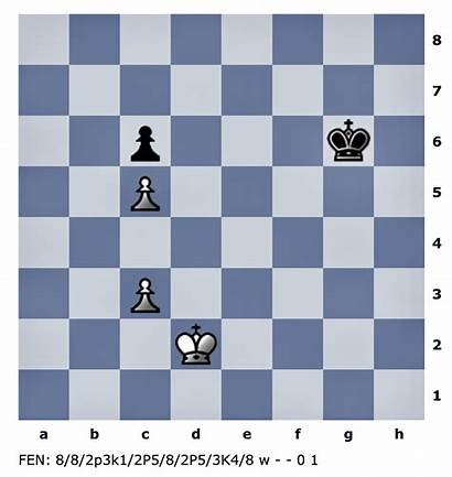 Chess Daily Improvement Endgame Special