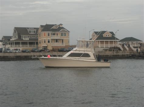 Charter Boat Fishing Nj by New Jersey Fishing Charters Point Pleasant New