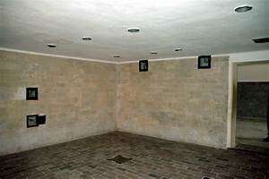 The gas chamber disguised as a shower room in the ...