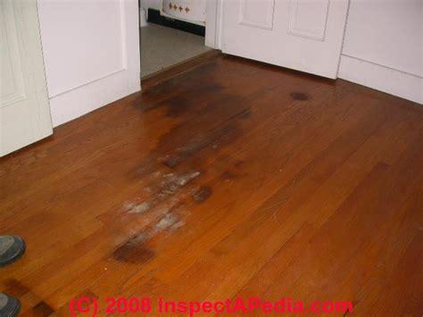 wood floor types damage diagnosis repair damaged wood