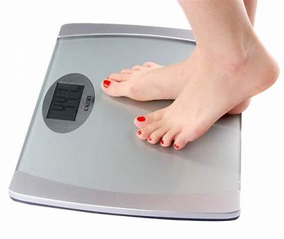 Weighing Scale Weight Objects