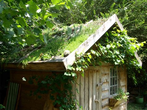 ancaya green roof garden shed greenroofscom
