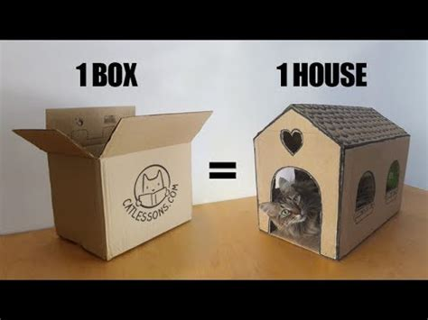 Transform A Simple Box Into A Cat House Youtube