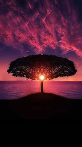 Ultra HD Magic Sunset Wallpaper For Your Mobile Phone 0453