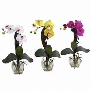 Nearly Natural Mini Phalaenopsis Orchid Arrangement (Set