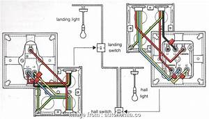 Single Pole  Way Switch Wiring Most 3 Gang 2  Dimmer