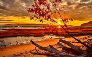 Romantic, Sunset, Nature, Beach, Wallpapers, Hd, Desktop