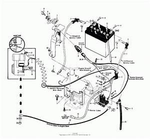 Horse Parts Diagram
