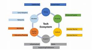 What Is Business Ecosystem