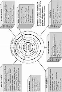 2 Neuman Systems Model Adapted For Learning Disability Nursing  How The