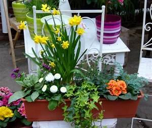 Kunstblumen Für Balkon : bepflanzter fr hlings balkonkasten 60 cm pflanzen ~ A.2002-acura-tl-radio.info Haus und Dekorationen