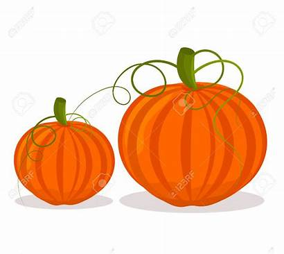 Objects Clipart Object Pumpkins Number Vector Cliparts