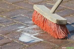 Hausmittel Gegen Moos : sauerstoffbleiche hausmittel zum reinigen bleichen und desinfizieren ~ A.2002-acura-tl-radio.info Haus und Dekorationen