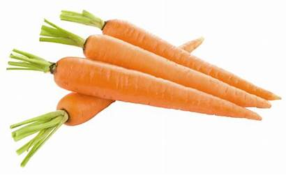 Carrots Clipart Vegetables Yopriceville Previous