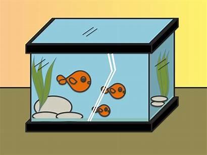 Draw Drawing Easy Fish Tank Step Fishtank