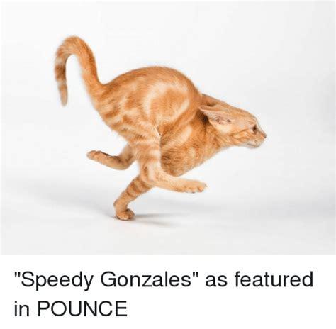 Speedy Meme - speedy gonzales as featured in pounce meme on me me
