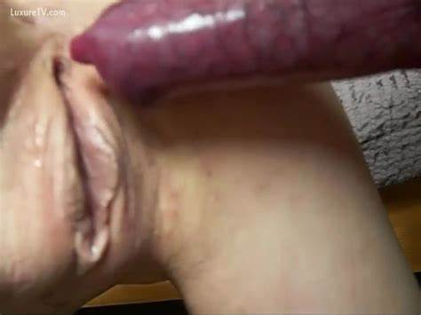 Muse Will Sperm Gaping Inside Her
