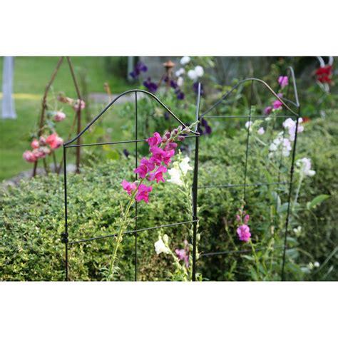 treillis pour plante grimpante support treillis et tuteur plante grimpante jardin et saisons