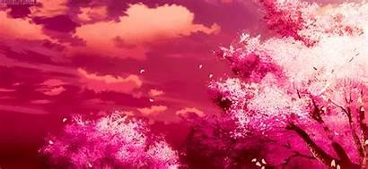 Cherry Awakening Sonata Amino Zelda Yuri Citrus