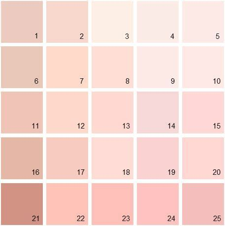 what paint color neutralizes pink 25 best ideas about benjamin pink on