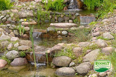 Garten Landschaftsbau Berlin Zehlendorf by Teichbau Teiche Und Gartenteiche Vom Gartenbau Und