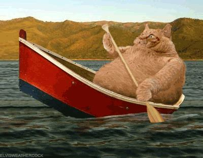 Boats And Hoes Animated Gif by Boats Ships Canoes And Rowing Animations