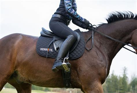 horse pants riding guide feed