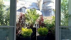 Plantes Et Fleurs Pour Balcon : urban green un jardin vos fen tres paysagiste paris ~ Premium-room.com Idées de Décoration
