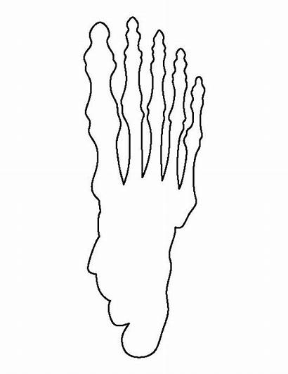 Skeleton Foot Pattern Template Printable Outline Human