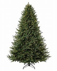 Oh, Christmas, Tree