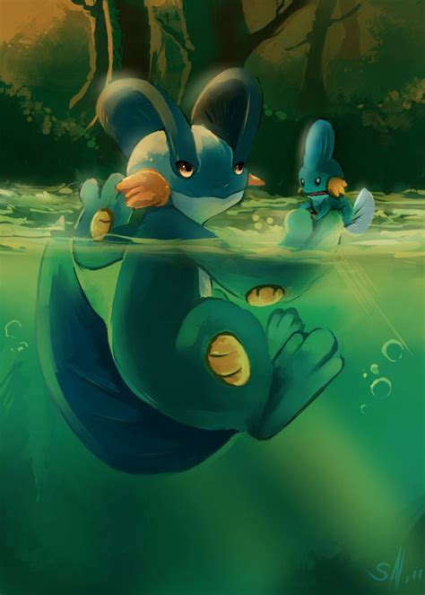 best 25 mudkip ideas on hoenn region pok 233 mon