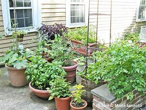 Container vegetable gardening for Container vegetable gardens
