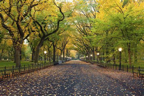 new york web central park bouwwerk central park in new york new york