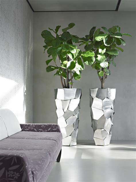 Reception Plants - Indoor Plant Displays for Your Entrance