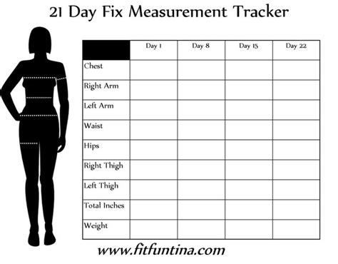 measurements  day fix tracking  day fix