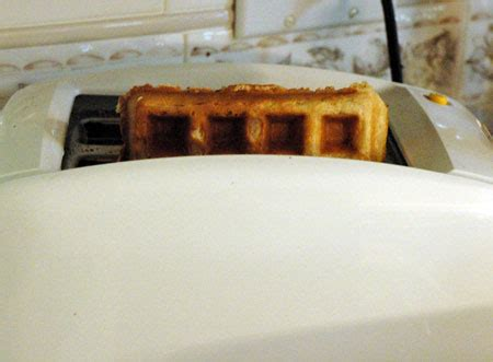 Waffles In The Toaster - toaster waffles the persnickety palate