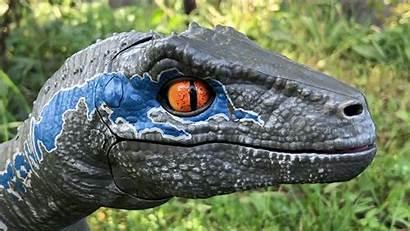 Raptor Dog Plastic Perfect Pet Keep Mouth