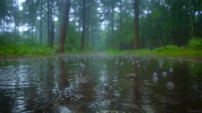 Rain Water Stills Living Gifs Giphy Source