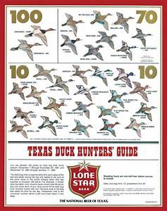 Lone Star Beer Duck Hunters Poster