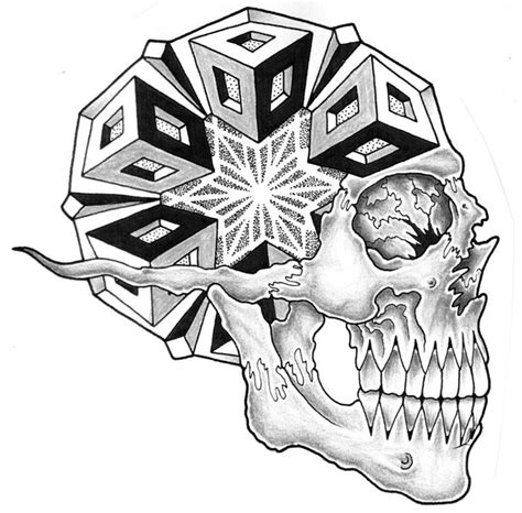 image detail  geometric side view skull  jontoogood  deviantart geometric designs