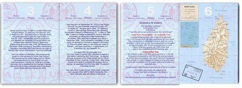 passport  destination wedding pink custom passport