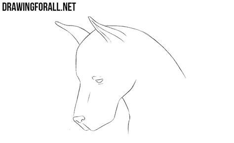 draw  dog head drawingforallnet