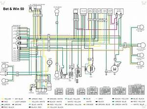 Rascal 305 Scooter Wiring Diagram