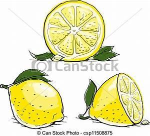 Vectors Illustration of ripe lemon with leaf. vintage set ...