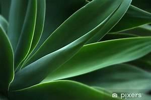 Papier D Arménie Usine : papier peint usine d 39 agave pixers nous vivons pour changer ~ Melissatoandfro.com Idées de Décoration