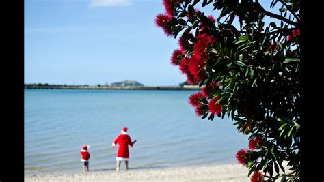 New Zealand's Days Of Christmas-tourism New Zealand Media