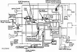 Fig  1  Vacuum Diagram  Altima   Courtesy Of Nissan Motor