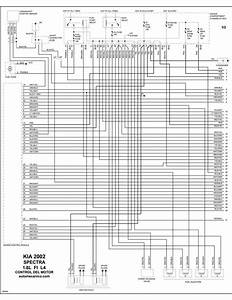 Kia - Diagramas Control Del Motor 2002