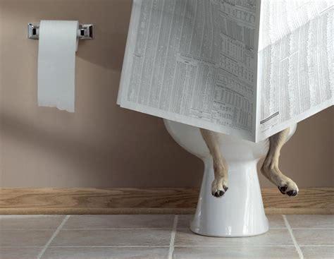 hi res on toilet from pet butler dayton in dayton