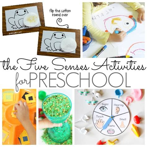 preschool activities that feature the five senses pre k 783 | 5 senses facebook